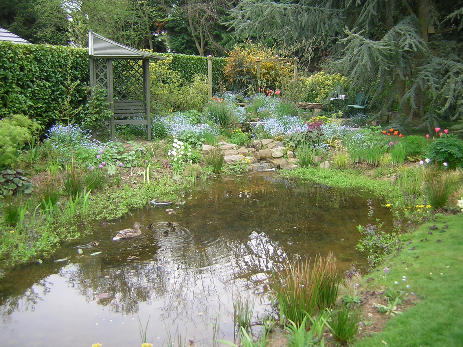 Our gardening services natural gardens - The pond house nature above all ...